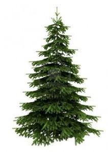 купить елку