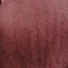 Норковые шубы