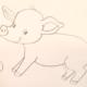 Как нарисовать свинку — символ 2019 года