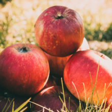 Почему нельзя есть яблоки до Яблочного Спаса (19 августа)?