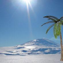 Какой была Антарктида 50 млн лет назад, и почему она обледенела?