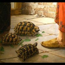 Дрессировщик черепах — необычная должность при дворе османского султана