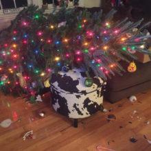 К чему падает новогодняя ёлка?
