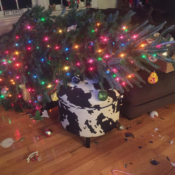 Новогодняя ёлка упала