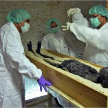 Проклятие Тутанхамона — неизвестный древний вирус?