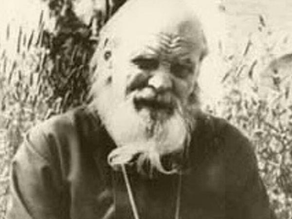 Владислав Солнечногорский