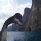 Доисторическое чудовище обитает в Чёрном море?